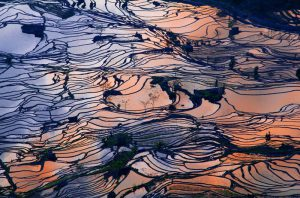 Yuanyang Hani Rice Terraces in Honghe, Yunnan
